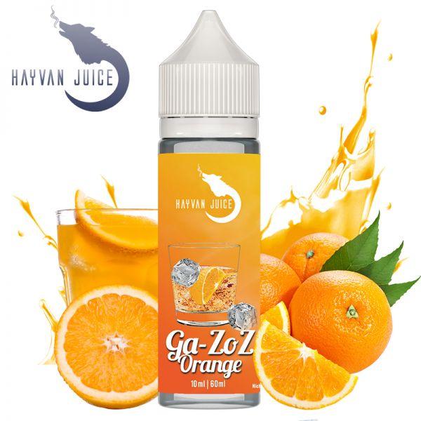 Hayvan Juice Gazoz Orange Aroma